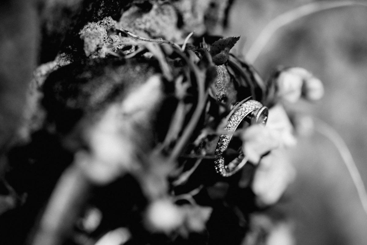 Ringe Steinchen Ast Blumen Ehe silber Bündnis Unendlichkeit Hochzeit