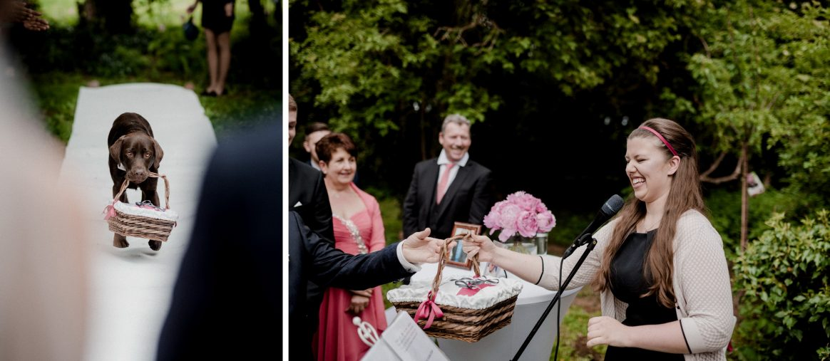 Hund Freude Lachen Hochzeit Labrador Blumen Sommer Gäste Rede