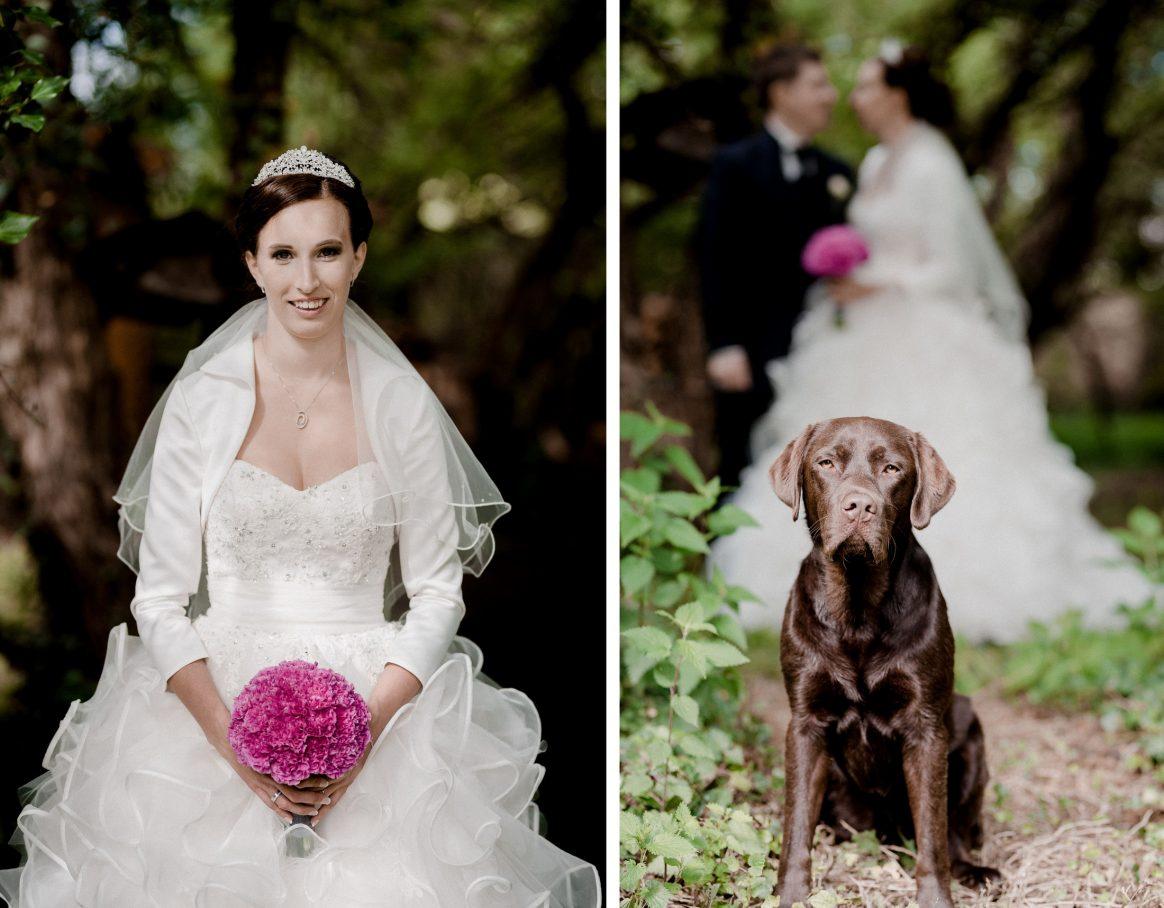 Braut Brautkleid Strauß Schleier Diadem Lachen Hund Labrador Ehepaar Bräutigam