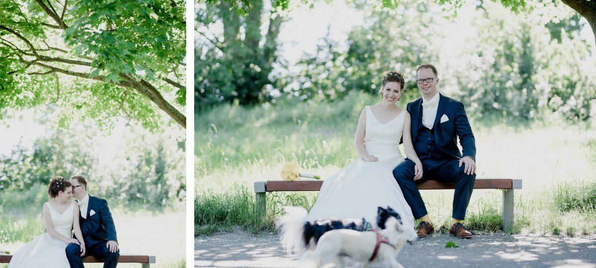 Baum Natur grün Paar Liebe Vertrautheit Wedding Hunde Sonnenstrahlen Lachen