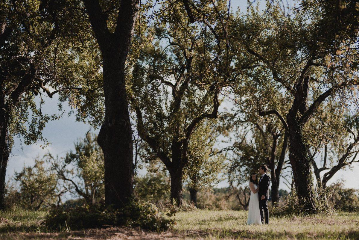 Bäume Wiese Sommer Brautpaar