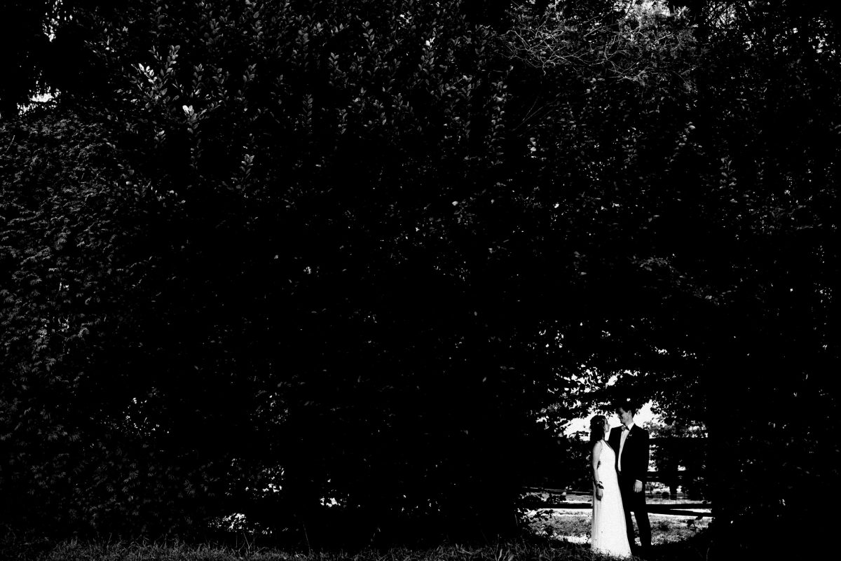schwarz weiß Bäume Paar