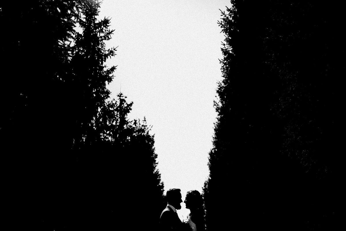 Silhouette Brautpaar Bäume Himmel
