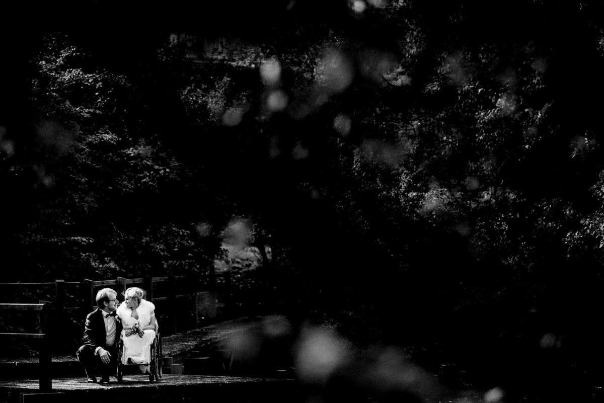 Bäume,Ehepaar,Brücke,zu zweit,Liebe,Hochzeitsshooting
