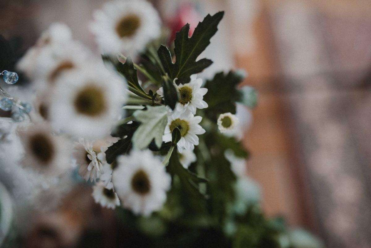 Blumen,weiß,