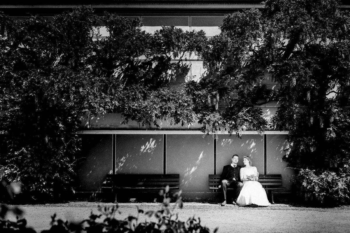 Sitzbank,Bäume,Brautpaar