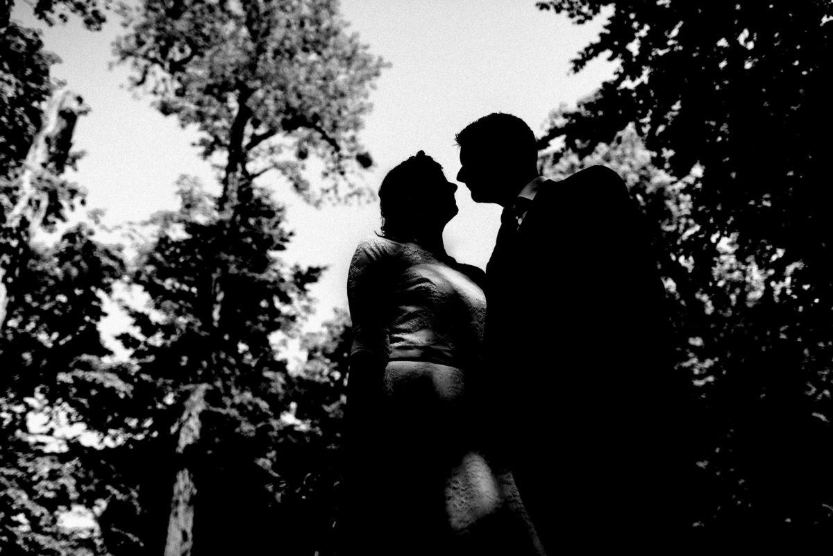 Silhouetten,Bäume,Paar,Hochzeit