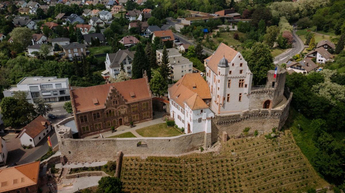 Burg Alzenau,Weinberg,Burgmauer