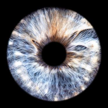 Irisfotografie Irisbilder Augen