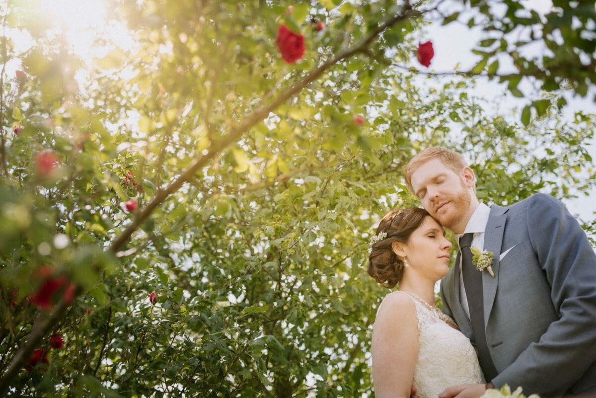 Rosenbusch,Brautpaarshooting,arm in arm,sinnlichkeit