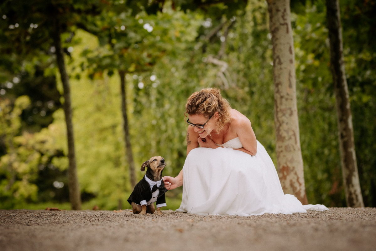 Hochzeit, heiraten, Hochzeitsfotograf, Braut, Brautkleid, Hund, Anzug